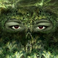 Somogyi Andrea profilképe